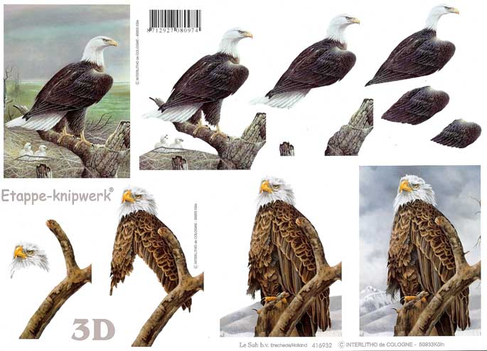 Eagle 3d Step By Step Decoupage Sheet