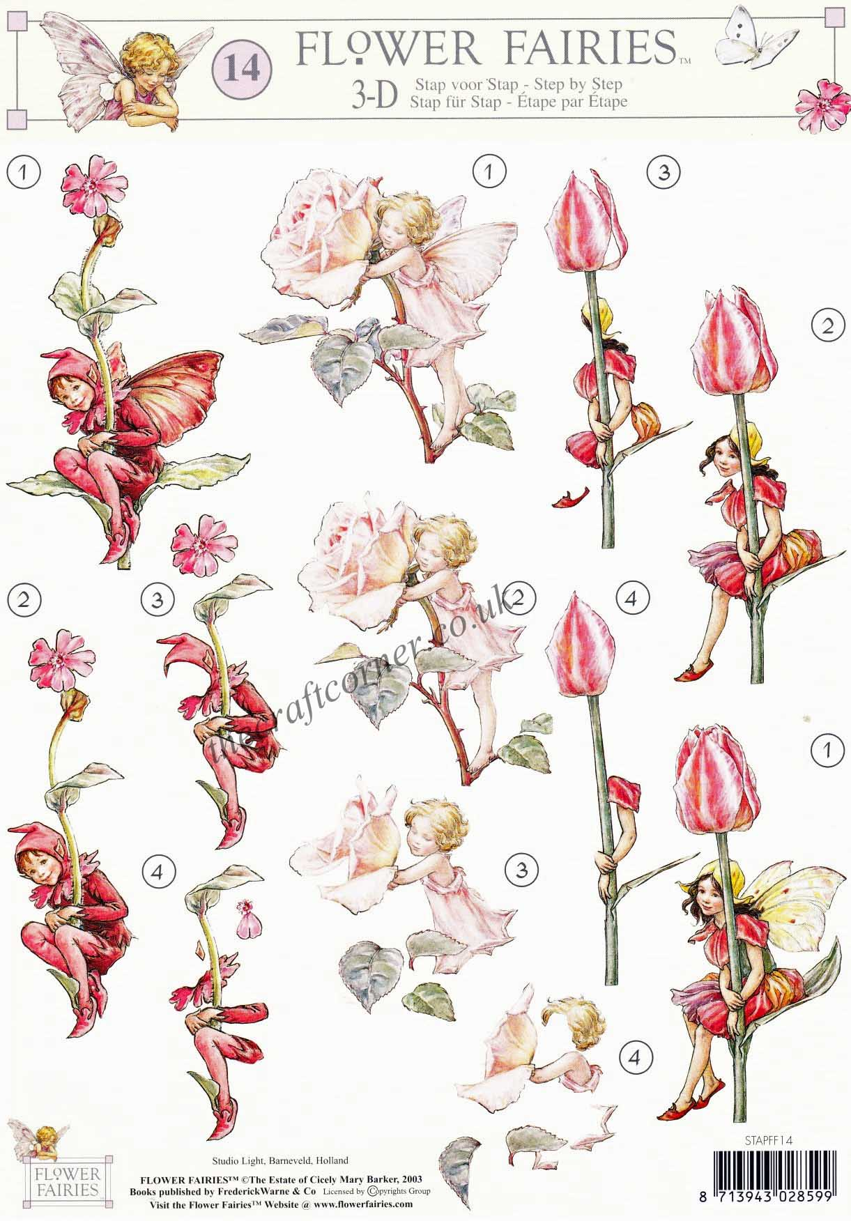 Flower Fairy 14 Tulip Rose & Red Campion Flower Fairies by Cicely Mary Ba