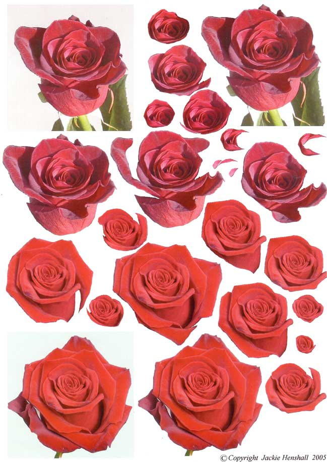 red rose 3d decoupage sheet